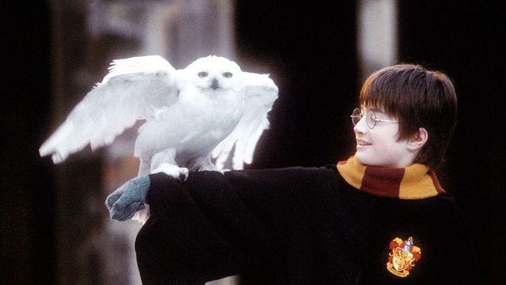 Harry Potter und der Stein der Weisen  in 4K  Sa 21.Nov