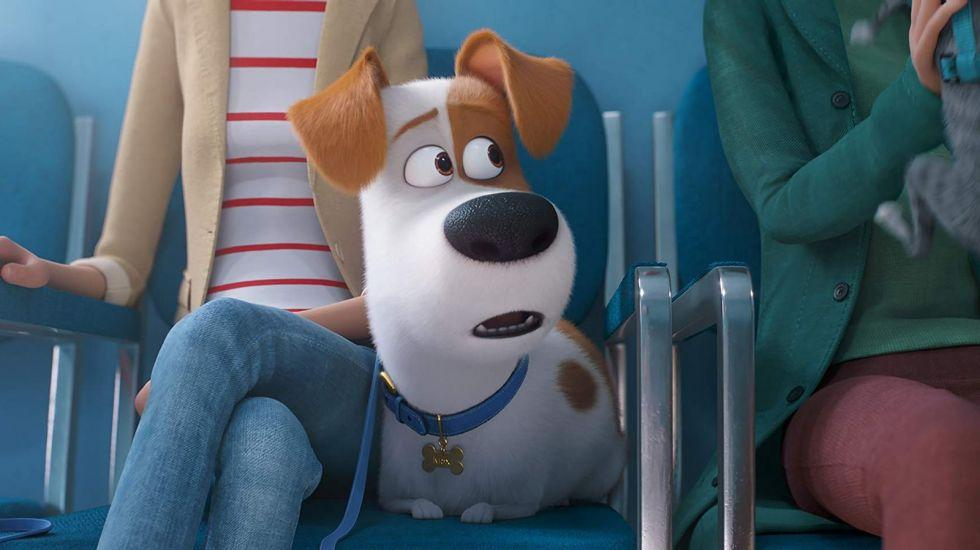 Preview: Pets 2 am So. 23.6. in 2D 13.30 und 3D 15.30 Uhr