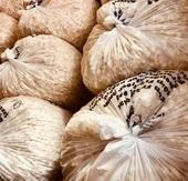 Produktbild zu: Popcornverkauf 1/2